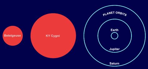 Image: Size comparison